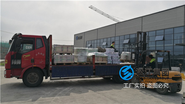 常州化纤厂动力装置DN300耐腐蚀橡胶软节头